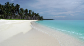 Thumbnail image for Did you know white beach sand is fish poop?