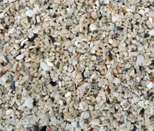 Beach Sand Magnified Zoom
