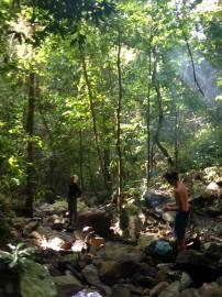 Adventuring in the island's jungle