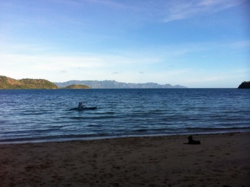 Terence on his kayak trying to catch lunch, and on the beach their 'jungle dog'