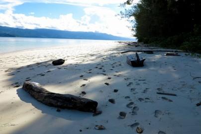 The main beach where docastawayers usually camp