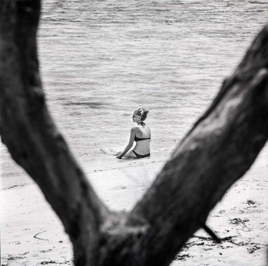 Polly sentada en la orilla