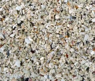 Arena playa con conchas aumentada