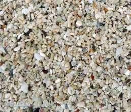 Beach sand with shells