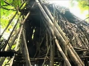 Ho Van Lang last tree hut shelter