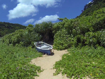 Sotobanari desert Island Iriomote Okinawa Japan
